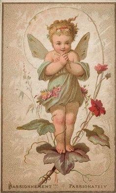 vintage fairy ephemera