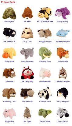 Pillow Pets & Names