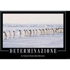 Poster motivazionali - Determinazione