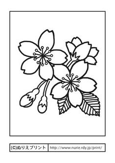 Cherry blossom coloring sheets geisha pages flower page fun 8 tree drawing ideas colouring Simple Flower Drawing, Floral Drawing, Japanese Quilts, Japanese Art, Stencils, Stencil Templates, Hand Embroidery Patterns, Embroidery Designs, Coloring Sheets