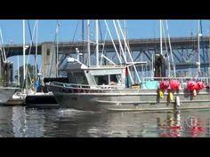 Kayak This! False Creek, Vancouver, BC