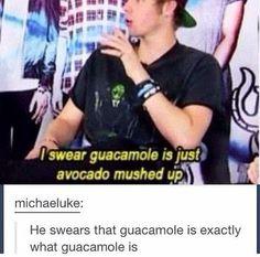 He swears guacamole is what guacamole is》GUACAMOLE GUAGUACAMOLE