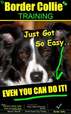 Border Collie Training | Think Like a Dog, But Don't Eat ... https://www.amazon.com/dp/B00JMHCSSY/ref=cm_sw_r_pi_dp_uOlIxbWQMQDWJ