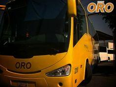 LAS MEJORES RUTAS DE AUTOBUSES. En Autobuses Oro, somos especialistas en bridar servicio de calidad a nuestros pasajeros, hemos mejorado nuestro flota de autobuses para que disfrute de traslados placenteros y con la tranquilidad de que llegará seguro a su destino. #autobusesoro