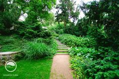 #landcape #architecture #garden #path #stairs