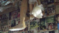 Ex-votos esculpido em madeira. Imagens fotograficas tamanho 3X4 ao fundo presas à parede.