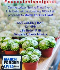 Today's Succulent Bar at the Spring Fling event at Lilla Bello in Bergamot will be in full support of of today's proceeds will be donated to - We are marching with you 💚🌵🤝! March For Our Lives, Bergamot, Succulents, Bar, Vegetables, Spring, Food, Essen, Succulent Plants
