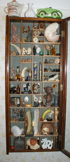 My Cabinet of Curiosities by D.Frampton
