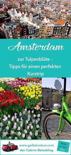 Wenn im wunderschönen #Amsterdam die #Tulpen blühen, dann ist das ein unvergessliches Erlebnis. Tipps für deinen perfekten Kurztrip im #Frühling in die Stadt der #Grachten