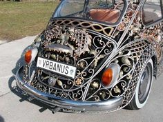 WILDLY DECORATED BUG!