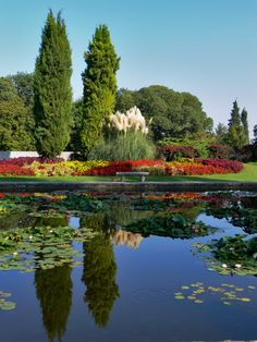 Im Parco Giardino Sigurta - Norditalien