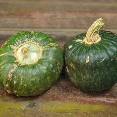 Winter Squash Guide   Co+op, welcome to the table Herb Seeds, Garden Seeds, Planting Seeds, Organic Vegetable Seeds, Organic Gardening, Gardening Tips, Winter Squash Varieties, Forage Crops, Buttercup Squash