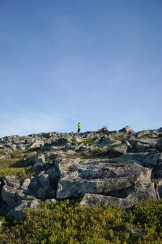 Be a part of it. Don't fight it. Nature. #LeviLapland #Finland #Lapland #summer #hike    ©MarikaLindström     (photoshoot: nature and hiking pics for Levi)