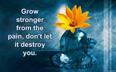 Grow stronger from. Dont Ever Give Up, Areas Of Life, Losing Someone, Childhood Cancer, Domestic Violence, Orange Flowers, My Baby Girl, Self Improvement, Grief