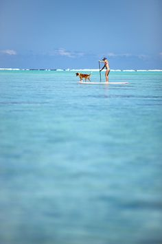 Stand Up Paddle Boarding on a YOLO Board in the Gulf of Mexico with your dog. DestinVacation.com or DestinBeachsideInn.com