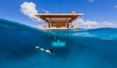 ¿Quieres perderte en tu propia isla desierta? Vete a Pemba, una de las islas de Zanzibar.