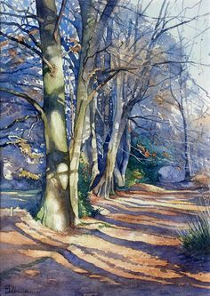 Brian Robinson - Winter Sunlight