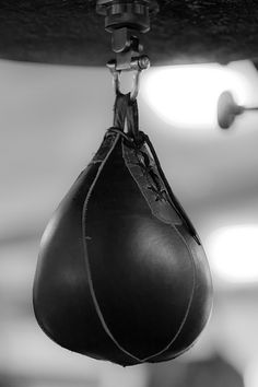 Curley would pass his spare time doing what he likes best, punching.  He would like a punching bag like this one here.