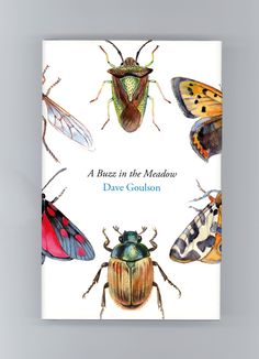 A Buzz In The Meadow - Dave Goulson || Art Direction by James Jones, Illustrations by Louise Bird
