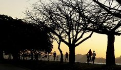 Contornos da manhã desta segunda-feira, no Aterro do Flamengo. #amanhecer [Foto: Marcelo Piu/O Globo]