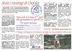 Campagne 2014 - Chi siamo, cosa facciamo e come aiutarci - #LegadelCane #LAquila