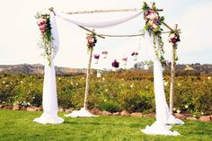 Birch arch from Casi Cielo Events & Flowers. Kimberlee Miller Photography