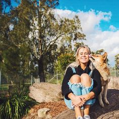 WEBSTA @ djtigerlily - Have you ever got kisses from a dingo? 👅🐕💞 Spending time with these young rescue dingoes was one of the BEST things I've ever done! 😍 Dingoes in Australia don't often get the best rep, but they are endangered and their population numbers are rapidly declining! 😩🌎 .....Exploring NSW and all its got to give with @visitnsw