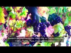 Poderi Capecci - YouTube