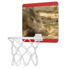 close-up of a wild boar on  Mini Basketball Goal Mini Basketball Backboard - home gifts cool custom diy cyo
