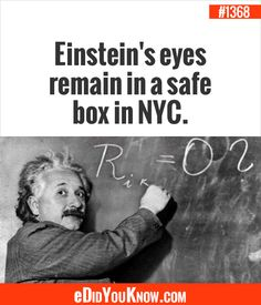 Did you know Einstein Eyes are kept in N. for safe keeping. Wierd Facts, Weird But True, Unusual Facts, Wow Facts, Wtf Fun Facts, True Facts, Weird Things, Interesting Facts, Let It Out