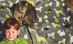 backstage photography - It's a Dogs Life fabric #fabric #animalpattern #homedecor #inspiration