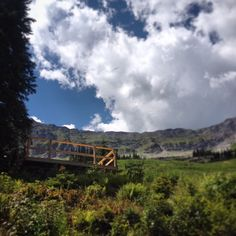 Our new observation deck in Lizard Bowl offers spectacular views of the bowl and the town of Fernie. Access via the Summer Road hiking trail from the top of the Elk Chair (open daily all summer long!).  Photo by N. Matei