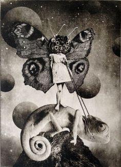 ARTFINDER: The Girl and The Chameleon by Jaco Putker -