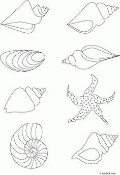 60 Idees De Dessin Coquillage Coquillage Dessin Coquillage Dessin