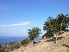 """""""Komuroyama""""(Komuro-montagna), Ito, Izu(Shizuoka), Japan"""