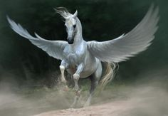 {{ Pegasus was a winged horse who sprung forth from the head of Medusa when Perseus decapitated her. Pegasus was also ridden by the hero Bellerophon when he went to kill the Chimera. Fantasy Creatures, Mythical Creatures, Pegasus Tattoo, Cavalo Wallpaper, Greek Mythological Creatures, Mythological Monsters, Horse Background, Horse Wallpaper, Hd Wallpaper