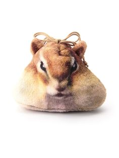 Pouch of a squirrel