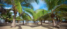 The 10 Best Beach Resorts in Sri Lanka