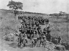 The first time New Zealand shipped military horses          overseas was for the South African War (1899–1902). Here,          New Zealand troops are on the road from Bulawayo to Tuli,          in present-day Zimbabwe.