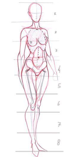Anatomía Muy, muy porción El básico de Ir-Dark