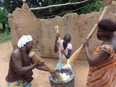 Image result for yam farming ghana