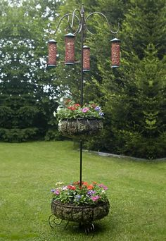 With hummingbird feeders and fuschias?