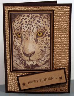 Safari Happy Birthday by Verbeena - Cards and Paper Crafts at Splitcoaststampers