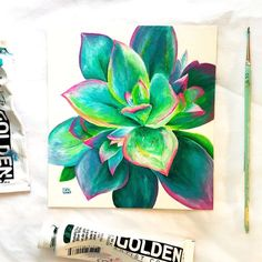 A beautiful succulent for kellysartcontest put on by iamkellyjohnson and today s painting for day 91 100 in Swipe to Cactus Painting, Plant Painting, Diy Painting, Painting & Drawing, Succulents Painting, Succulents Drawing, Fruit Painting, Arte Sketchbook, Mini Canvas Art