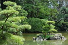 Korakuen and other Flowers and Gardens