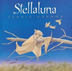 Stellaluna by Janell Cannon - fantastic book, my son loved this book when he was little (although his favorite one by Cannon was VERDI).  Stellaluna, a bat, wishes to be a bird!