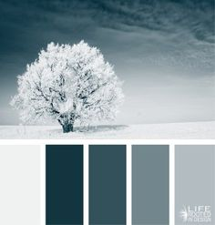 Daily Color Palette: Silent Blue Winter. Misty blue hues. Life Rooted in Design