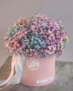 Boquette Flowers, Beautiful Bouquet Of Flowers, Luxury Flowers, Beautiful Flower Arrangements, Dried Flowers, Floral Arrangements, Beautiful Flowers, Wedding Flowers, Balloon Flowers