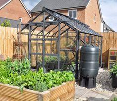 Elite Titan 700 Greenhouse 7 x 10 ft Elite Greenhouses, Wooden Greenhouses, Porch Garden, Garden Fencing, Aquarium Shop, Garden Site, Greenhouse Growing, Garden Structures, House
