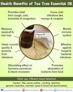 Health Benefits of Tea Tree Oil  It is said that when Mother Nature creates a diseases, she also creates the cure. Tea tree is one such plant. It can cure some of the most horrible and dangerous bacterial infections found in the tropics. Wounds, which are prone to contracting bacterial infections in this region, can be effectively cured and protected using this oil.